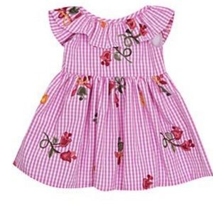 Rare Editions Gingham Floral Embroidered Dress